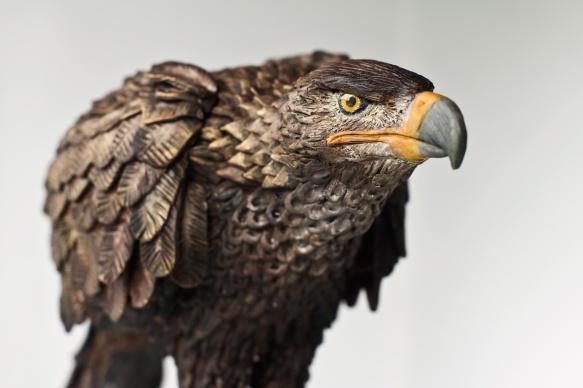 Eagle01-2